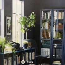 Ikea_Catalog_Plants_12