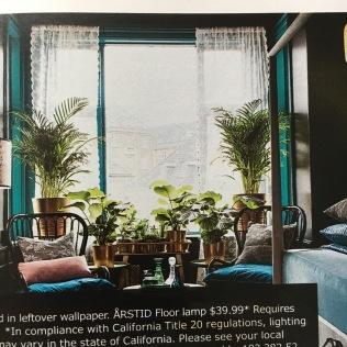 Ikea_Catalog_Plants_16