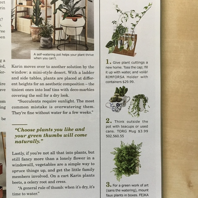 Ikea_Catalog_Plants_18
