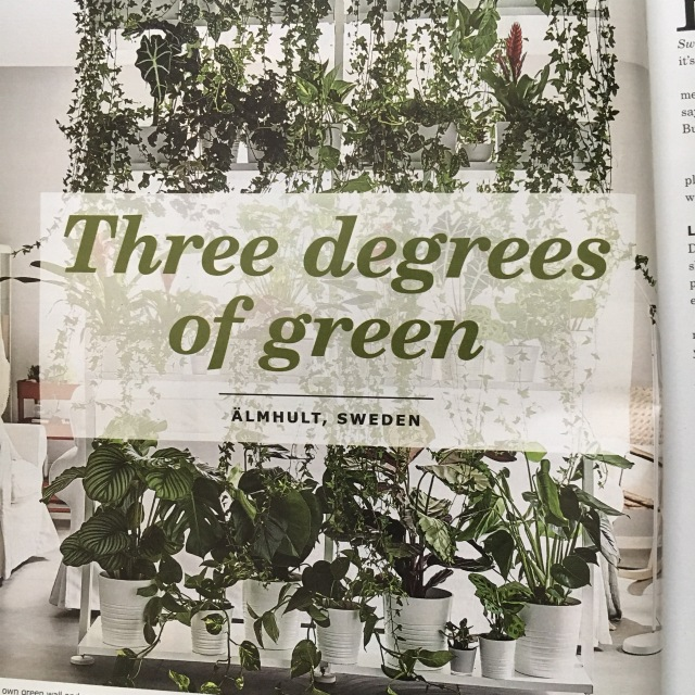 Ikea_Catalog_Plants_19
