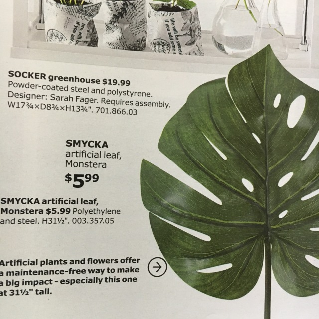 Ikea_Catalog_Plants_31