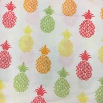 Pineapple_15