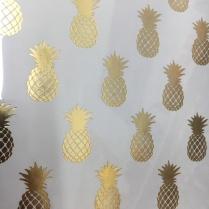 Pineapple_18